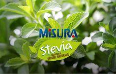 Proporzione stevia/zucchero Stevia, Christmas Ornaments, Holiday Decor, Cacao, Link, Christmas Jewelry, Christmas Decorations, Christmas Decor