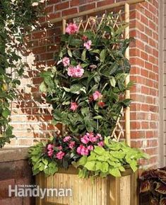 Use these tips and tricks when building with bamboo to make your planter and trellis strong.