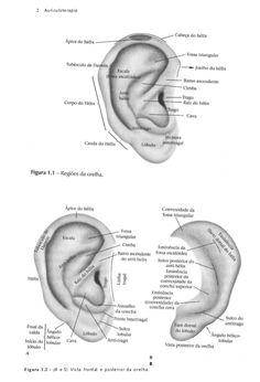 Descries funes e localizaes dos principais pontos do auriculoterapia 231740593 auriculoterapia dal mas fandeluxe Images