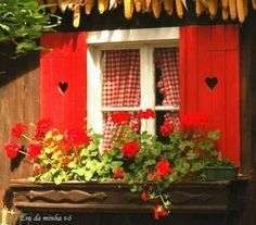 Red gingham window