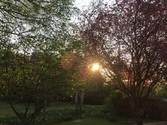 Sunrise in Dullstroom town. B & B, Sunrise, Scenery, In This Moment, Celestial, Nature, House, Outdoor, Outdoors