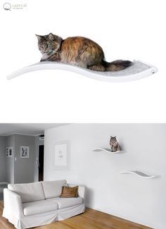 Cat perch, Shelf Wave, floating cat shelves, pet design, cat shelves, cat furniture, curve bed $128.76 USD