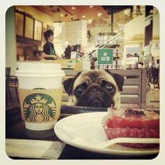 Coffee time con Pepa...