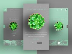 Succulent UI UX Landing Page designed by David Briers. Connect with them on Dribbble; the global community for designers and creative professionals. Web Design Mobile, App Ui Design, Web Design Company, User Interface Design, Page Design, Flat Design, Design Design, Affordable Website Design, Website Design Services