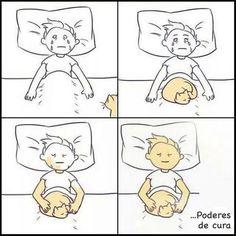 O poder dos gatos