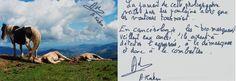 Coup de coeur contre le cancer - Photographie signée et dédicacée par Axel Kahn - Fondation Fournier-Majoie   http://www.fournier-majoie.org/fr/encherissez-coup-de-coeur