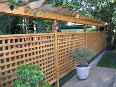 Lattice fence with arbor and chicken wire