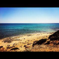 #campomarino