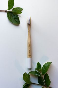 Plant 365 Trees every year with our Bamboo Toothbrush subscription. Our mission is simple: We plant as many trees as possible through an everyday product. Families, Bamboo, Environment, Day, Plants, My Family, Plant, Households, Planets
