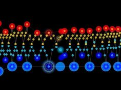Tune In to This Soothing Visualization of a Chopin Etude | Mental Floss