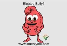 Do you suffer from bloated belly? Focus on whole foods that are rich in nutrients and natural enzymes. Avoid foods that are processed as they can create an inflammatory nightmare in your gut. Try adding Innerzyme's Digestive Enzyme Complex to your meals. When food is not broken down into small enough substrates, it can become toxic to the body and not only leave you feeling bloated and gassy but also tired and lethargic. http://www.innerzyme.com #digestion #bloatedbelly #innerzyme