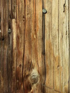 Ton of Wood Texture Stock for Photoshop textures