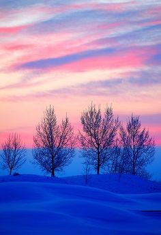Early Morning Pink - winter, Calgary, Alberta, Canada.