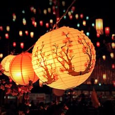 Imagem de light, japan, and night Lantern With Fairy Lights, Lantern Lamp, Lantern Festival, Paper Lanterns, Light Up, Night Light, Balloons, Bulb, Beautiful
