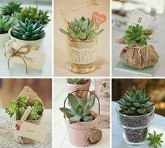 Wedding Giveaways Ideas Souvenirs, Bonbonniere Ideas, Succulent Favors, Flower Pots, Flowers, Cactus Y Suculentas, Garden Trees, Planting Succulents, Wedding Favors