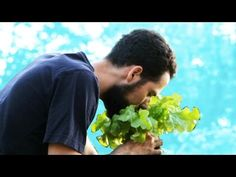 Canteiro de Horta Que Não Precisa ser Regado - Minha Horta Na Cidade - 2 - YouTube