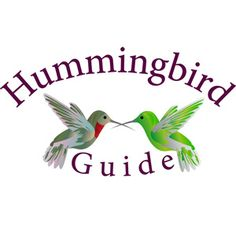 Up close and personal with hummingbirds. Decorative glass top and ports. Three feeding ports with decorative flowers. Perches for resting hummers. 8 oz. capacity $29.99