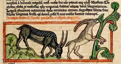 Goats grazing and feeding from tree. England c. 1236. BL | Flickr - Photo Sharing!
