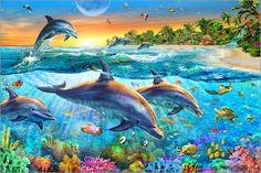 Adrian Chesterman - Die Bucht der Delfine