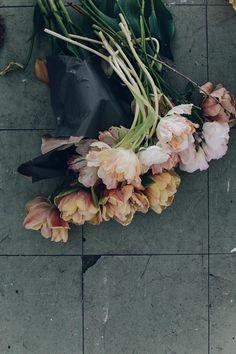 Spring Floral Arrangement by Swallows & Damsons | Design*Sponge