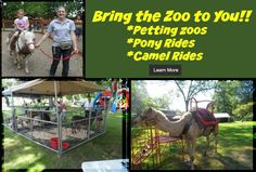 Living Treasures Wild Animal Park at 288 Pennsylvania 711, Jones Mills, Pennsylvania 15646