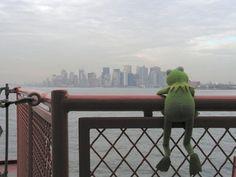 Everybody Loves NYC