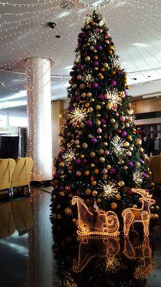 Holiday mood  #hotelsplendid #merrychristmas #happynewyear #holidayseason #festivedecoration