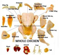 The parts of a whole chicken English Vocabulary Words, English Phrases, Learn English Words, English Lessons, English Grammar, English Teaching Materials, Teaching English, Photo Dictionary, Nutrition Poster
