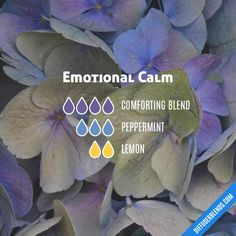 Emotional Calm - Essential Oil Diffuser Blend