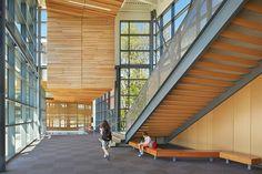 Carl Sandburg Elementary School, Lake Washington School District - NAC Architecture: Architects in Seattle & Spokane, Washington, Los Angeles, California Facade Architecture, Concept Architecture, School Architecture, Amazing Architecture, Architecture People, Seattle, School Building, Construction, Design Awards