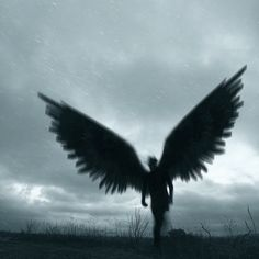 Angel Aesthetic, Book Aesthetic, Character Aesthetic, Aesthetic Pictures, Fantasy World, Dark Fantasy, Fantasy Art, Arte Obscura, Dark Photography