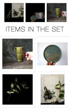 """""""herbarium"""" by longliving ❤ liked on Polyvore featuring art"""