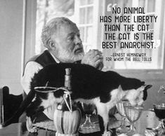 Hemingway and one of his cats.Ernest Hemingway was once given a 6 toed cat by a ship captain. That line of polydactyl cats can still be seen today at the Hemingway museum in Key West. Ernest Hemingway, Hemingway Cats, Hemingway Quotes, Cat Quotes, Animal Quotes, Funny Quotes, Crazy Cat Lady, Crazy Cats, Celebrities With Cats