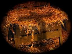 the reason for the season ~ the birth of our Savior Jesus Christ