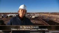 A tour of a beef plant guided by Dr. Temple Grandin, Professor of Animal Science at Colorado State University and widely considered to be the world's leading expert on humane animal handling at meat packing plants. This video provides an honest look at how cattle are handled at meat packing plants