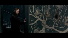 How to make your own Sirius Black Family Tree Wallpaper