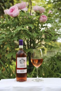 Nervi Rosa - Nebbiolo rosé
