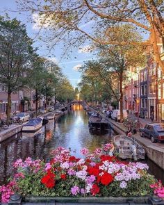 Beautiful Places To Travel, Wonderful Places, Cool Places To Visit, Places To Go, Pictures Of Beautiful Places, Wonderful Picture, Tour En Amsterdam, Amsterdam Travel, Hotel Amsterdam