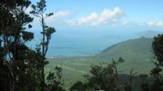 View from Mount Sorrow lookout, Daintree National Park. Photo: Queensland Government