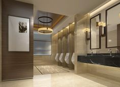 commercial toilet design - Google Search