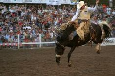 90th Strawberry Days & Rodeo  June 17 - 23, 2012