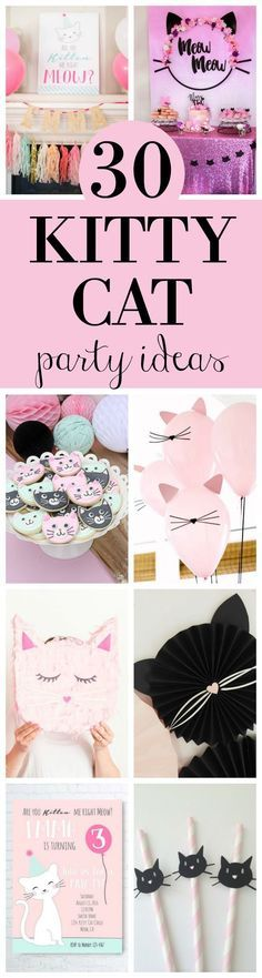 30 Cute Birthday Party Ideas Featured On Pretty My L Cat Themed Parties