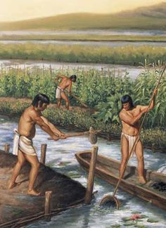 Just as they were with pottery and sculpting, the Mayans were skilled farmers. They cleared large parts of a tropical rain forest and built underground reservoirs for rainwater storage where water was scarce.