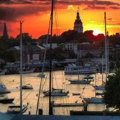 "a gorgeous colonial city and port. Such a relaxing place! ""DTA #sunset Downtown #annapolis #Maryland"""