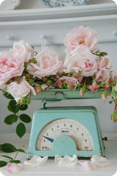 Gorgeous vintage scales and roses from Toves Sammensurium