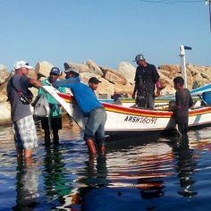 Feliz día del pescador para todos aquellos que responsablemente ejercen ese oficio sin detrimento de la naturaleza. #PescaArtesanal #IslaDeMargarita  #Venezuela