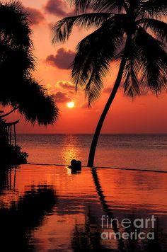 For You. Dream Coming True I. Maldives by Jenny Rainbow. #Maldives #JennyRainbowFineArtPhotography #Sunset #BeautifulSunset #Palm #Tropical #Romantic #WallArt #HoneymoonDestination #InteriorDesign #Reflections #TrendingArt