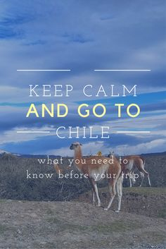 tips for trip to Chile
