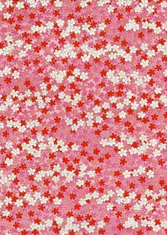 Red Pink White Flowers