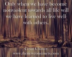 Only when we have become nonviolent towards all life will we have learned to live well with others.